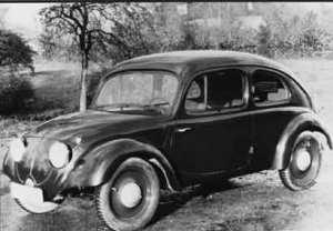 beetle6